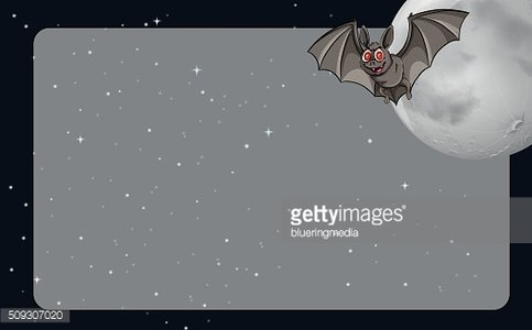 Border design with bat and fullmoon