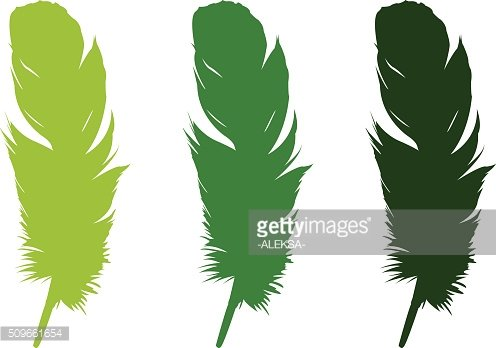 feathers silhouette