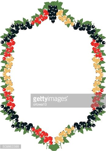 frame with currants in clusters on a transparent background