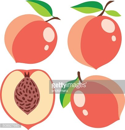 Collection of pink peaches, vector illustrations