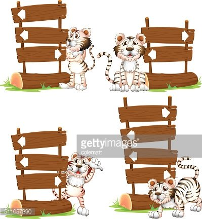 White tiger with wooden signs