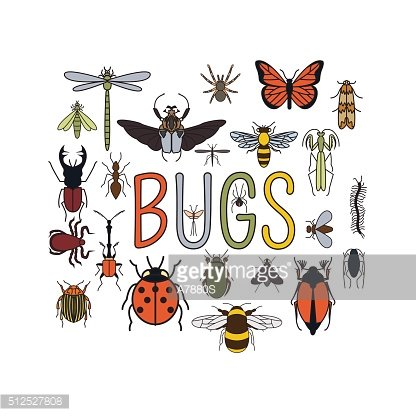 Insects icon flat style. 24 pieces in set
