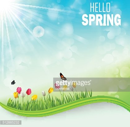 Springtime meadow background with tulip flowers and butterflies