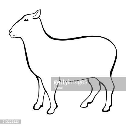 Sheep black white isolated illustration vector