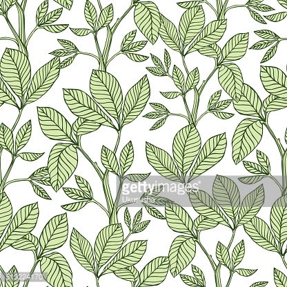 Vector seamless pattern - clover leaf