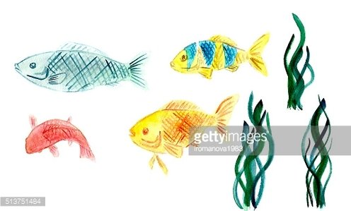 Watercolor fishes and sea weed isolated on white background