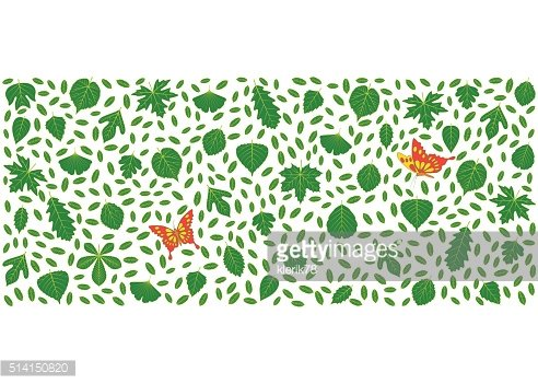 Spring background made of different tree leaves and butterflies