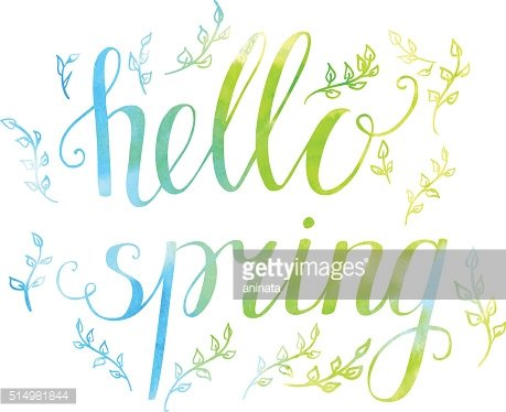 Bright vector illustration Hello spring with doodle plants.