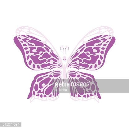 Vector butterfly drawn hand isolated on white background.