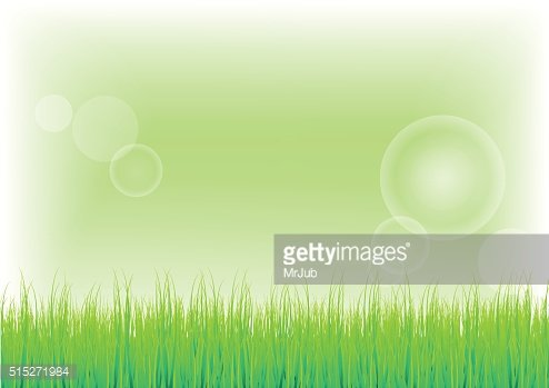 Green Grass and background