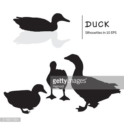 Set Of Images Of Ducks.