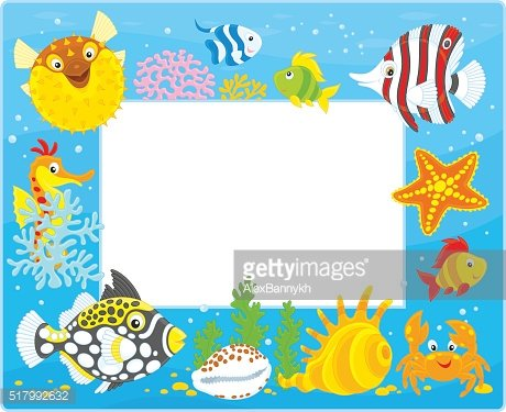 Frame with tropical fishes