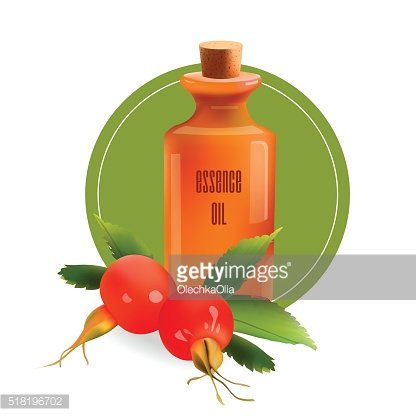 Glass Cosmetic Bottle with Rosehip. Vector Isolated Illustration.