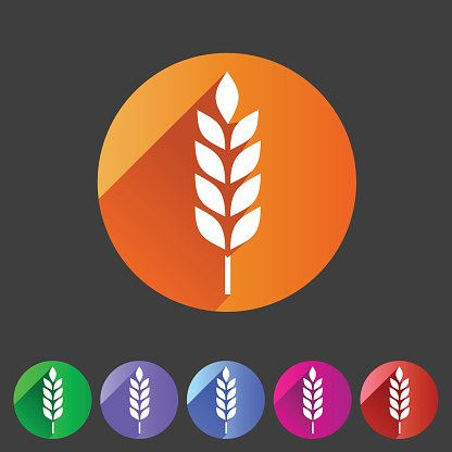 Gluten Free Vector Icon Flat Web Sign Symbol Logo Label