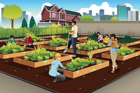 People Doing Community Gardening Clipart Image