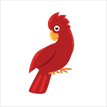 Red Cockatoo Parrot Clipart 1 566 198 Clip Arts