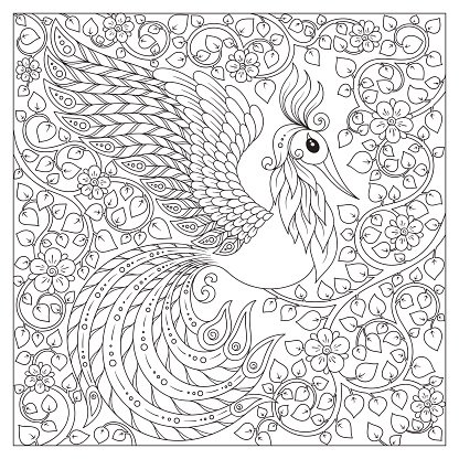 Peacock Adult Antistress Coloring Page Clipart Image