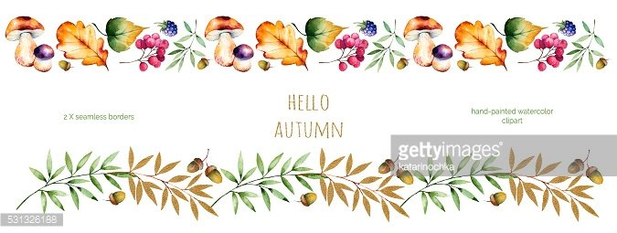 Colorful autumn seamless border with autumn leaves,flowers,branch,berries