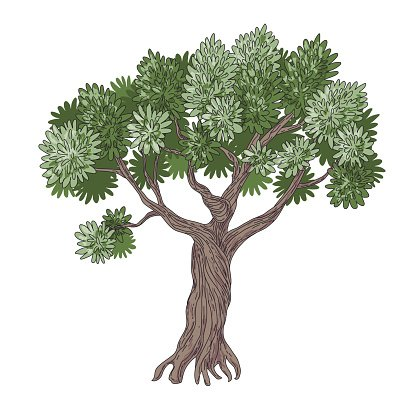 Olive Tree Isolated On Premium Clipart Clipartlogo Com