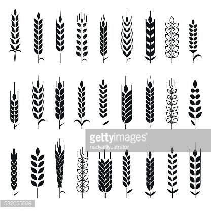 Wheat Ears Icons and Logo Set
