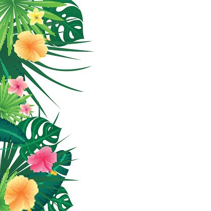 Vector Background With Tropical Leaves And Flowers Clipart Image Affordable and search from millions of royalty free images, photos and vectors. vector background with tropical leaves