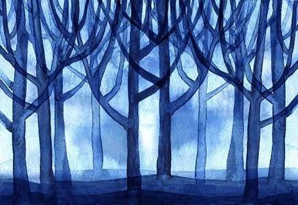 watercolor blue forest trees background premium clipart