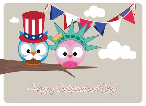 Patriotic owl. Owls wearing clothing during