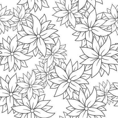 Chrysanthemums on a white background, seamless pattern