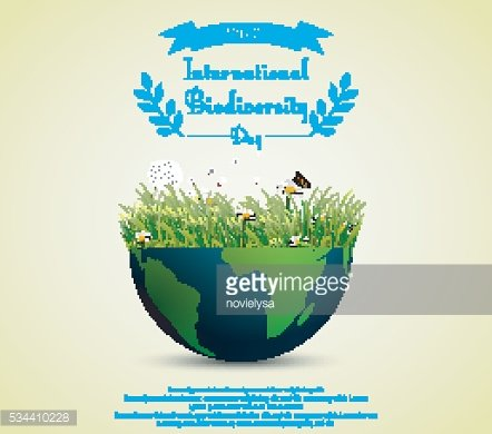 Green grass and flowers inside earth for International biodiversity day