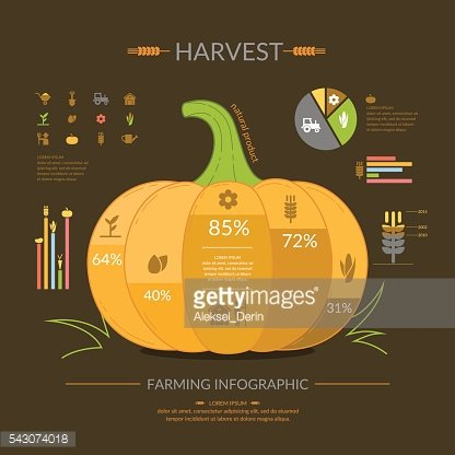 Infographics of the cultivation harvest