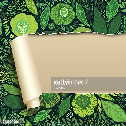 Ripped paper with floral ornament