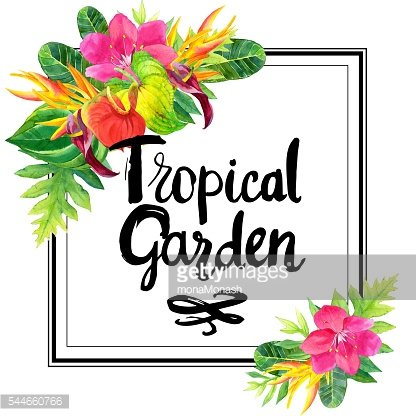 Illustration with realistic watercolor flowers. Tropical garden.