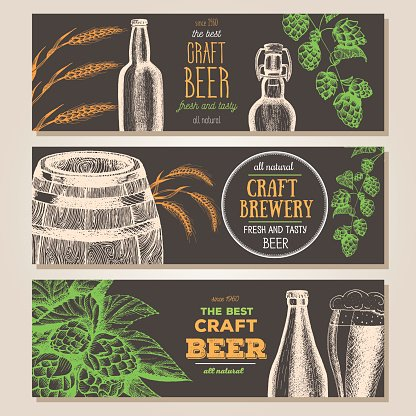 Banner set. Hand drawn beer horizontal banners. Line drawing