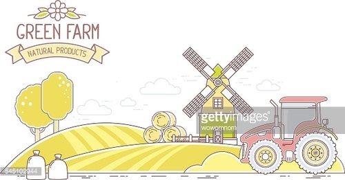 Agribusiness.Vector illustration of autumn harvest yellow farm