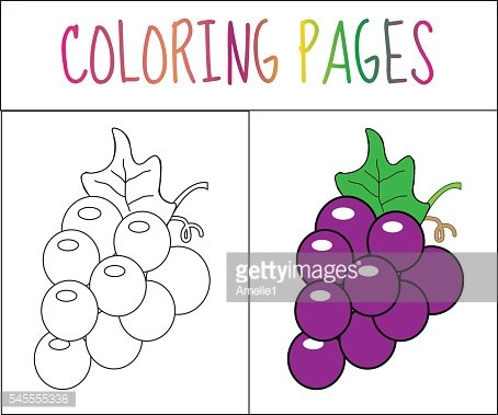 Coloring book page. Grapes. Sketch and color version.