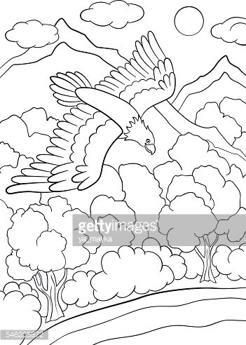 Coloring pages. Wild birds. Cute eagle flying under the forest.