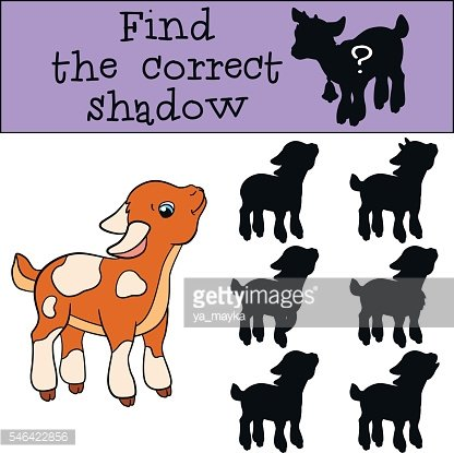 Children games: Find the correct shadow. Cute little baby goat.