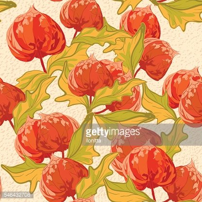 Vintage wallpaper seamless pattern with cape gooseberry flower.
