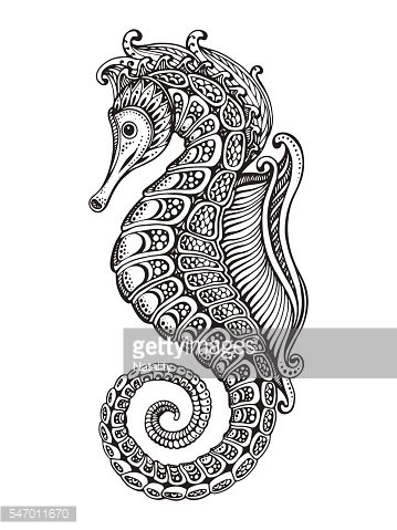 Hand drawn graphic ornate seahorse