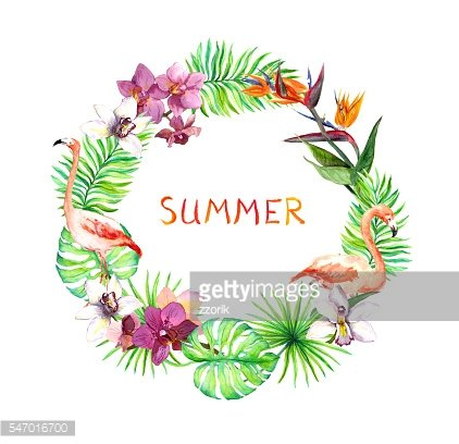 Tropical leaves, exotic flamingo birds, orchid flowers. Wreath border. Watercolor