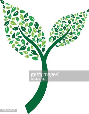 Leaf Pair Plant with leaves Vector Illustration