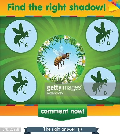 find right shadow bee