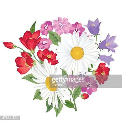 Flowers bouquet isolated with chamomile and bluebell Floral background.