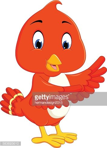 Cute orange bird cartoon