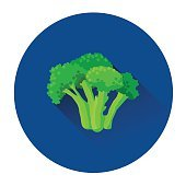 Broccoli Cabbage Colorful Vegetable Icon