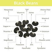 black beans nutrient of facts and health benefits, info graphic