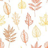 Hand drawn vector illustrations. Seamless pattern with leaves