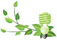 CFL Light Bulb and Green Leaves