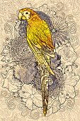 parrot line art with yellow colored on flora background