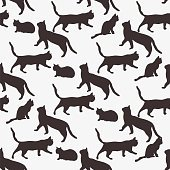 Background of the cats.